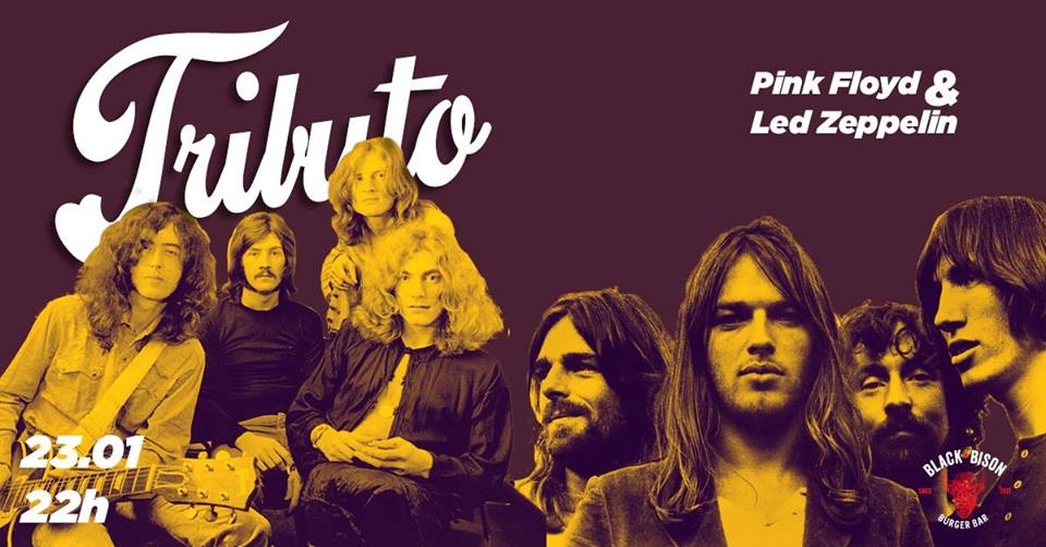 Tributo Pink Floyd e Led Zeppelin